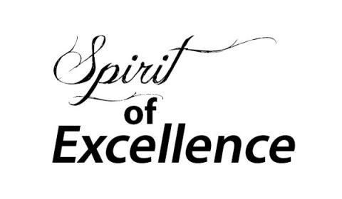 Spirit of excellence in EXCELL project